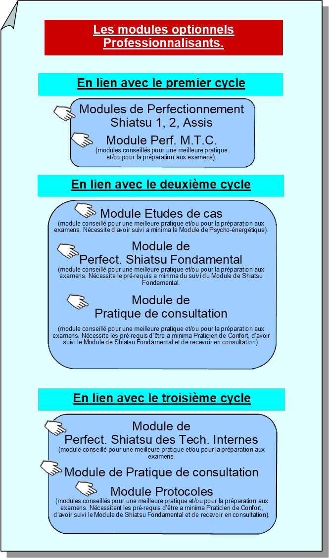 Cycle Shiatsu, les modules professionnalisants