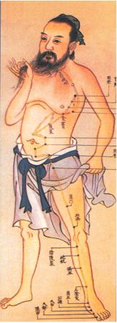 Formation en Shiatsu, l'esprit de la formation